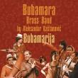 Bubamarija (2011)
